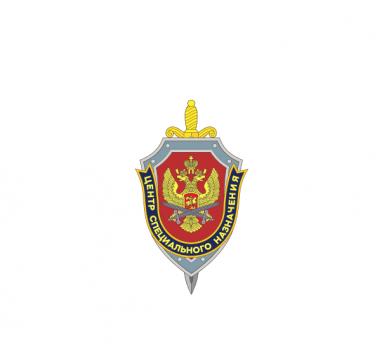 """Наклейка на авто """"ЦСН"""" ФСБ РФ"""
