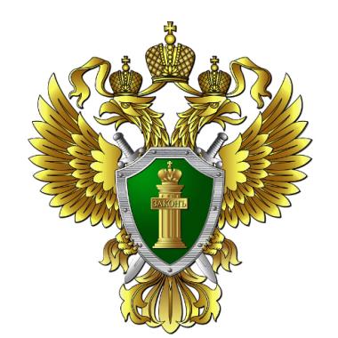 """Наклейка на авто """"Прокуратура РФ"""", виниловая"""